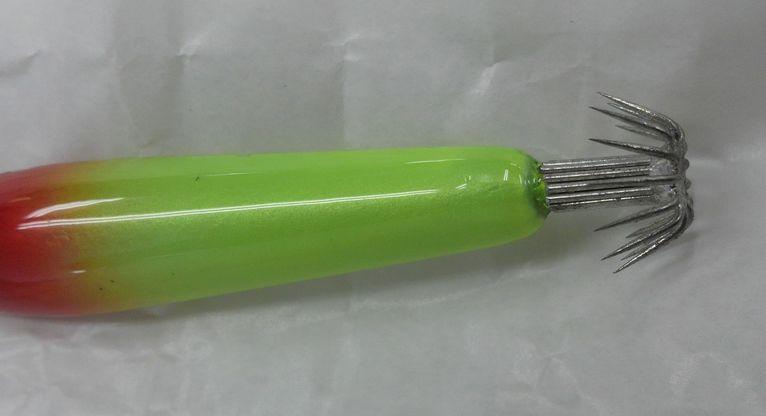 Dcim0012